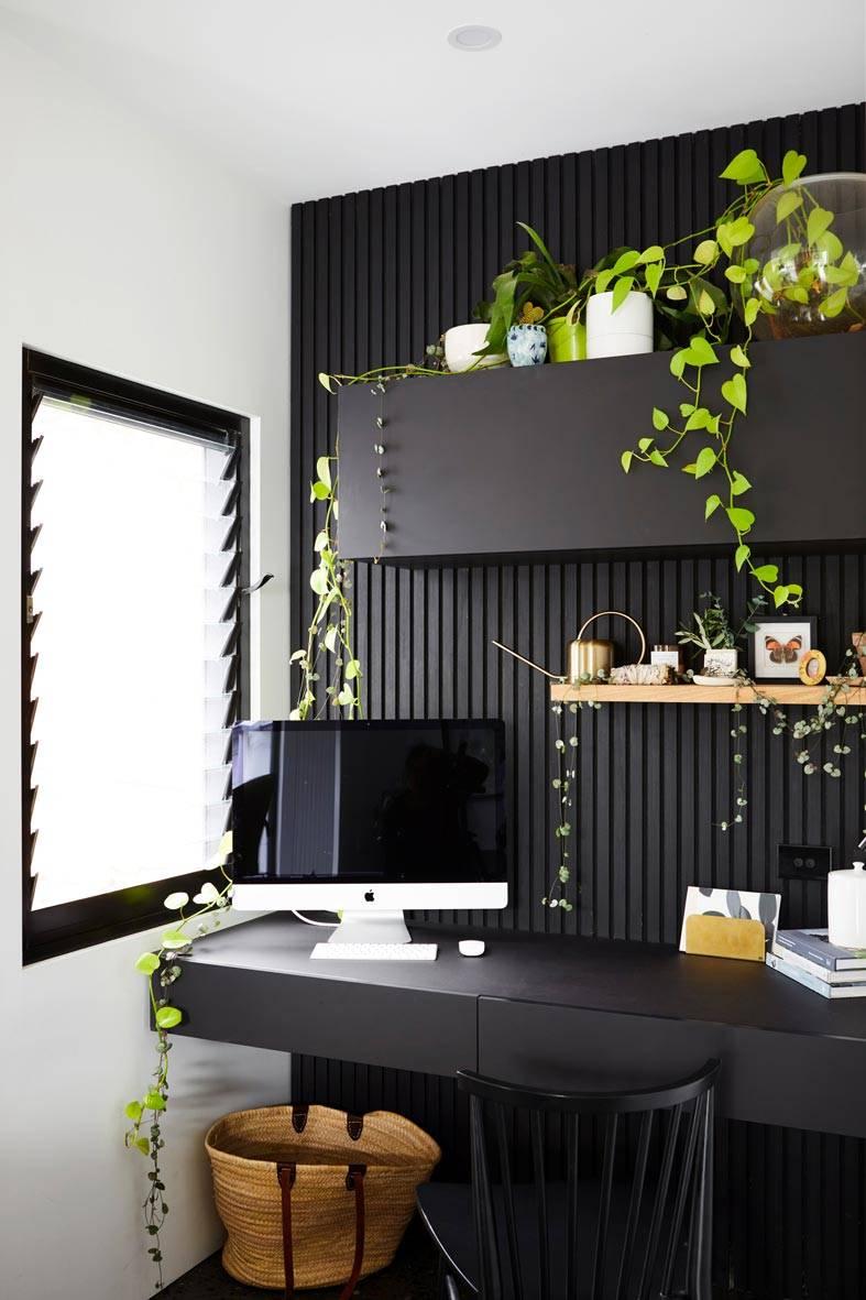 черная стена на рабочем месте и живые растения