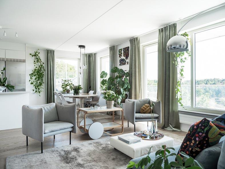 просторная гостиная с разными комнатными растениями фото