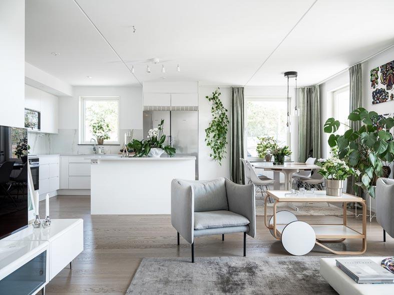 открытое пространство между кухней и гостиной комнатой